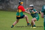 limerick all ireland junior camogie champions 2014 (10)