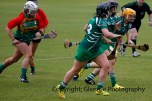 limerick all ireland junior camogie champions 2014 (11)