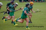 limerick all ireland junior camogie champions 2014 (12)
