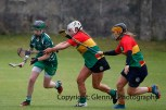 limerick all ireland junior camogie champions 2014 (13)