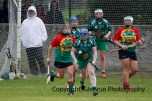 limerick all ireland junior camogie champions 2014 (14)