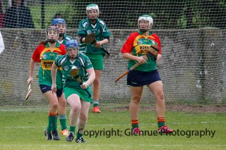 limerick all ireland junior camogie champions 2014 (15)