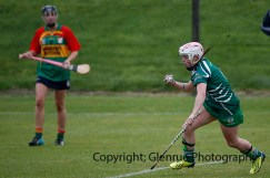 limerick all ireland junior camogie champions 2014 (17)