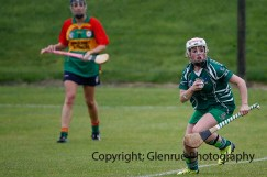 limerick all ireland junior camogie champions 2014 (18)