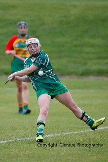 limerick all ireland junior camogie champions 2014 (19)