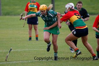 limerick all ireland junior camogie champions 2014 (20)