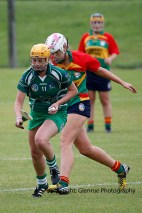 limerick all ireland junior camogie champions 2014 (21)