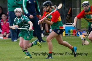 limerick all ireland junior camogie champions 2014 (22)