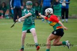 limerick all ireland junior camogie champions 2014 (23)