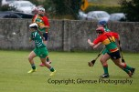 limerick all ireland junior camogie champions 2014 (24)