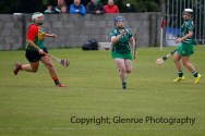 limerick all ireland junior camogie champions 2014 (25)
