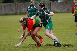limerick all ireland junior camogie champions 2014 (28)