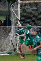 limerick all ireland junior camogie champions 2014 (29)