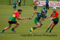 limerick all ireland junior camogie champions 2014 (3)