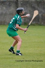 limerick all ireland junior camogie champions 2014 (30)