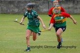 limerick all ireland junior camogie champions 2014 (31)