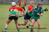 limerick all ireland junior camogie champions 2014 (32)