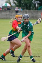 limerick all ireland junior camogie champions 2014 (33)