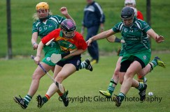 limerick all ireland junior camogie champions 2014 (34)