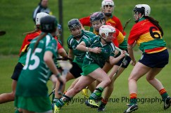 limerick all ireland junior camogie champions 2014 (35)