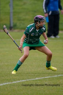 limerick all ireland junior camogie champions 2014 (36)