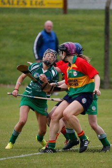limerick all ireland junior camogie champions 2014 (37)