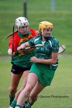 limerick all ireland junior camogie champions 2014 (38)