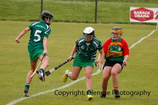 limerick all ireland junior camogie champions 2014 (39)