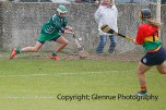 limerick all ireland junior camogie champions 2014 (40)