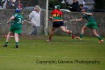 limerick all ireland junior camogie champions 2014 (41)