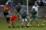 limerick all ireland junior camogie champions 2014 (42)