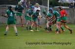 limerick all ireland junior camogie champions 2014 (43)