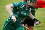 limerick all ireland junior camogie champions 2014 (44)