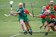 limerick all ireland junior camogie champions 2014 (45)