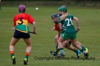 limerick all ireland junior camogie champions 2014 (46)