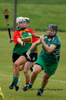 limerick all ireland junior camogie champions 2014 (49)