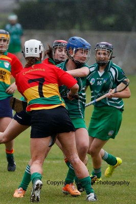 limerick all ireland junior camogie champions 2014 (5)