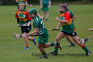 limerick all ireland junior camogie champions 2014 (51)