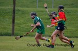limerick all ireland junior camogie champions 2014 (52)