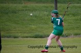 limerick all ireland junior camogie champions 2014 (54)