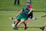 limerick all ireland junior camogie champions 2014 (55)