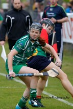 limerick all ireland junior camogie champions 2014 (56)