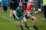 limerick all ireland junior camogie champions 2014 (57)