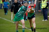 limerick all ireland junior camogie champions 2014 (58)