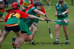 limerick all ireland junior camogie champions 2014 (59)