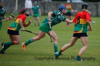 limerick all ireland junior camogie champions 2014 (6)