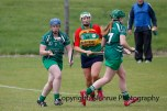 limerick all ireland junior camogie champions 2014 (61)