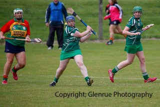 limerick all ireland junior camogie champions 2014 (62)