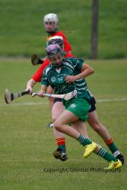 limerick all ireland junior camogie champions 2014 (63)