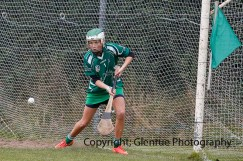 limerick all ireland junior camogie champions 2014 (65)
